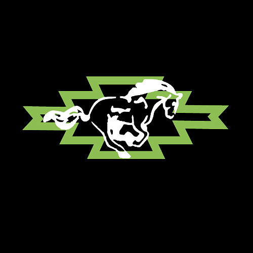 Aussie Horse Stables and Sheds Logo
