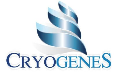 Dog Breeder Website Design – Cryogenes