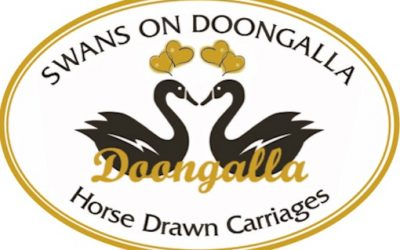 Melbourne Horse-Drawn Carriage Website – Swans on Doongalla