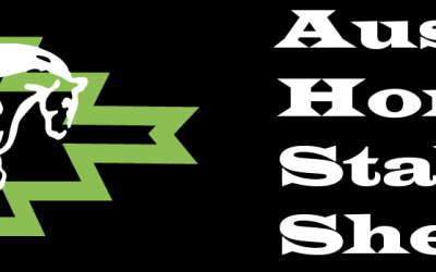 Aussie Horse Stables and Sheds Website Build